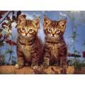 Кошка №3
